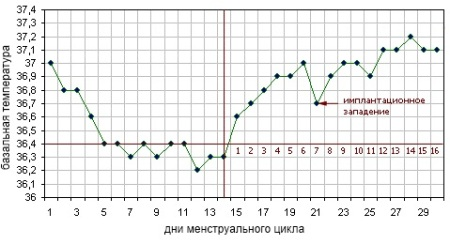 График изменения базальной температуры при беременности