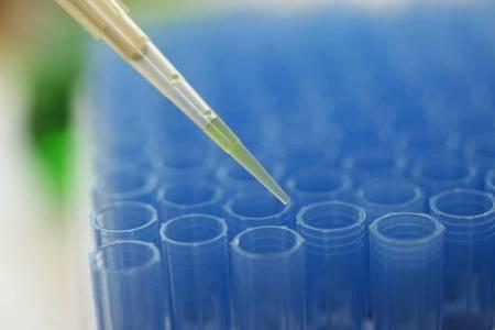 ЭКО: имплантация эмбриона при ЭКО