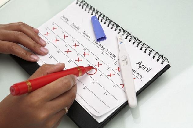 Тесты на овуляцию: как работают, в какой день использовать, популярные тесты