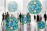большинство людей инфицировано вирусом герпеса